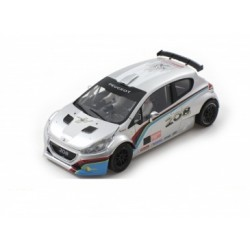 Peugeot 208 T16 Cup Edition Silver / White R-Version AW